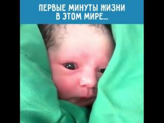 Привет, народ, я родился ~Умная мама~
