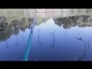 РЫБАЛКА НА УДОЧКУ 2017 . МИНУТА ПЕРЕРЫВА МЕЖДУ ПОКЛЕВКОЙ. ОКУНЬ, КАРАСЬ. Рыбалка на видео