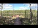 От Медвежьего угла до озера