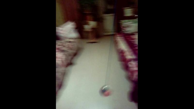 мячик попрыгунчик