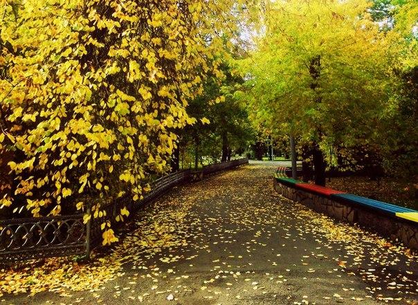 Осень в Центральном парке.