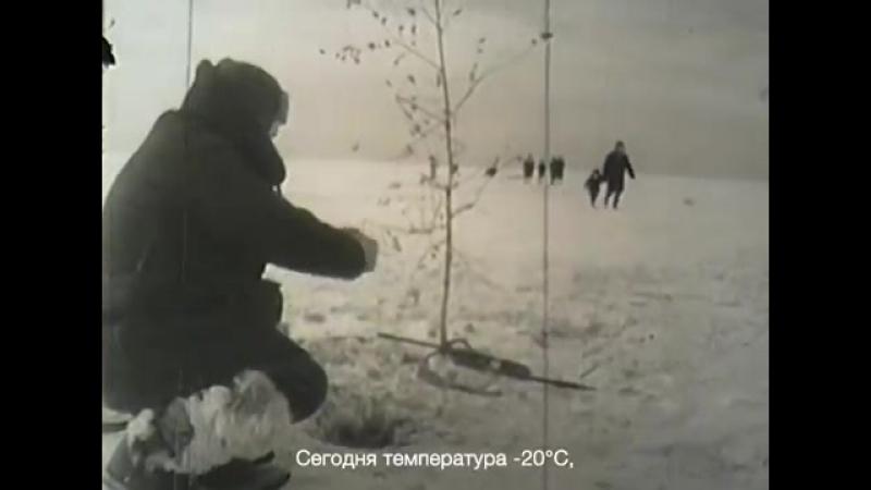 BBC.Сибирь-великий экспиремент
