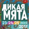 """Автобусный тур на """"Дикая Мята 2017"""" из СПБ"""