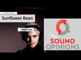 Sunflower Bean perform