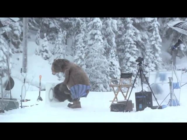 Неожиданное появление медведя на съемках (Кураж-Бамбей)