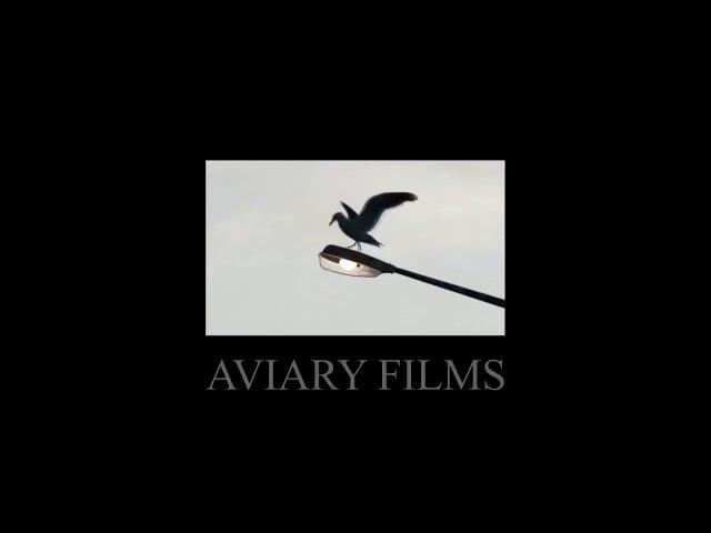 Aviary Films Improved SFX