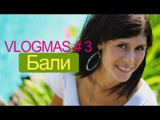 Vlogmas 3: Бали, дикие обезьяны!