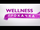 Wellness Прокачка