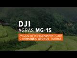 Рассказ об опрыскивании полей с помощью дронов (БПЛА) DJI Agras MG-1S