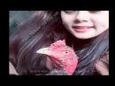TOP 100 Nữ Sư Kê nổi tiếng trong giới gà chọi