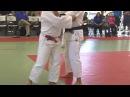 Sanix 2014 Judo Teacher's Clinic