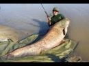 Вот это СОМ Удачная рыбалка с лодки на удочку! Офигенный трофей
