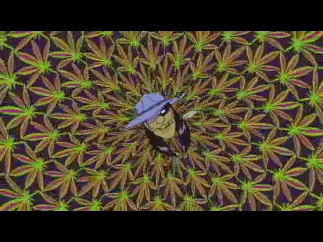 Майор Лазер - Марихуаныч (ровный цикл) · coub, коуб