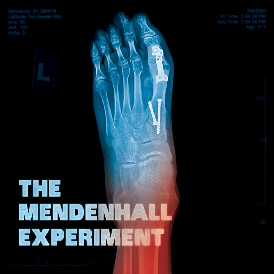 The Mendenhall Experiment - The Mendenhall Experiment [EP] (2017)