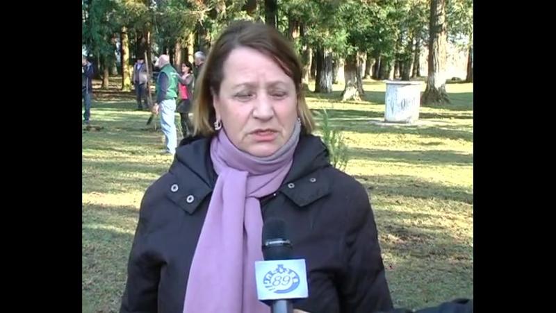გამწვანების აქცია ხაბუმეს საჯარო სკოლაში - საინფორმაციო ცენტრი _კოლხეთი 89__sainformacio centri kolkheti 89
