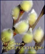 Вербочка в дом принесет Мирское благословение, Пусть Бог вас от бед сбережет В это Вербное Воскресение!!!