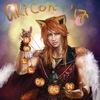 AniCon и AkiCon Festivals