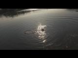 Joe Bermudez ft. Louise Carver - Sunrise (Dapa Deep Remix)