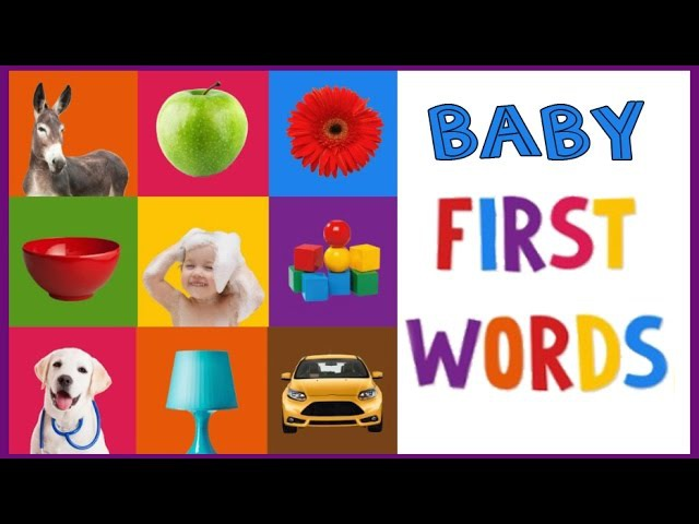 BABY - TODDLER FIRST WORDS EDUCATIONAL VIDEO LEARNING VEHICLES, ANIMALS, FOOD, TOYS WITH SOUNDS