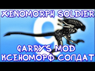 XENOMORPH SOLDIER/КСЕНОМОРФ СОЛДАТ GMOD
