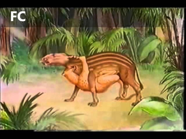 A evolução dos Felinos e Caninos através da história 3/4. Caninos 1