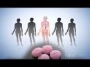 Фармакология варфарин история открытия механизм действия антикоагулянта