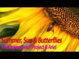 The Hyponeystal' Project &amp Ariel - Summer, Sun &amp Butterflies