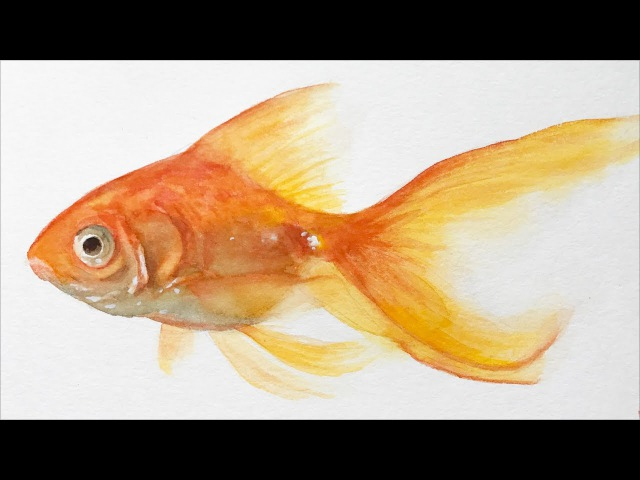 Watercolor painting lesson - Goldfish - full lesson
