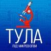 Тула под микроскопом, Афиша, Тульские новости