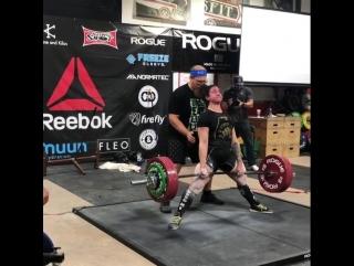 Джина Аверса - тяга 252,5 кг (75 кг)