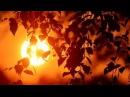 The House of the Rising Sun Дом восходящего солнца.