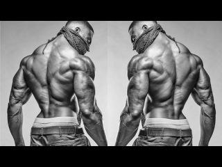 Fitness & Aesthetics Motivation | Ripped Nation
