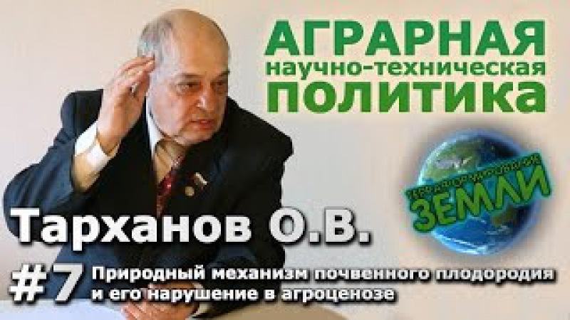 Беседа с Тархановым О.В. 7 Природный механизм почвенного плодородия и его наруше...