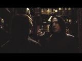 Radium   Severus & Sirius    Bromance
