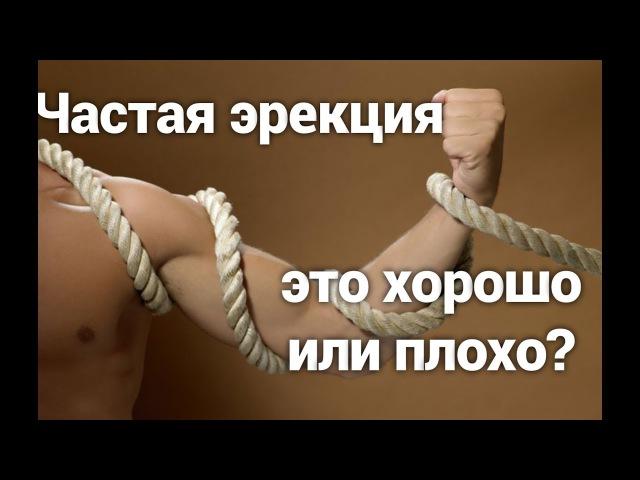 Частая эрекция это хорошо или плохо? Что делать если стоит? причины частой эрекц » Freewka.com - Смотреть онлайн в хорощем качестве