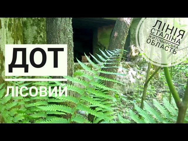 Лісовий ДОТ на Лінії Сталіна в Житомирській області