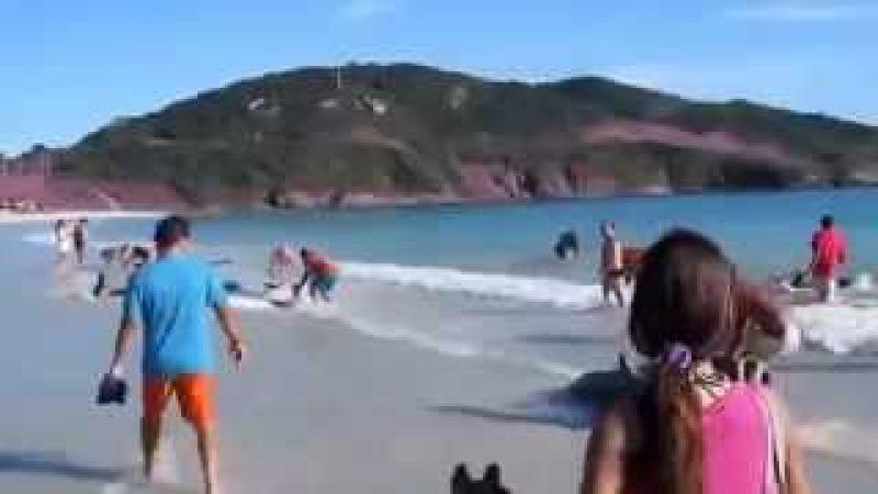 Он просто снимал море и пляж, как вдруг » Freewka.com - Смотреть онлайн в хорощем качестве