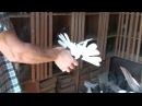 о торцовом стиле полёта у голубей. часть 1