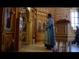 Каждение при Пении Херувимской песни (4.11.2016)...