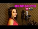 DAIANA Despacito Luis Fonsi ft Daddy Yankee