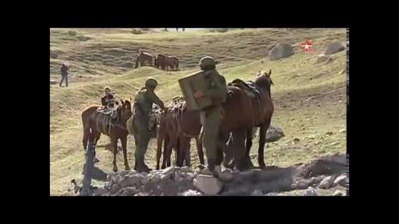 Из десантников в кавалеристы: «Звезда» показала, чему обучают спецназ ВДВ