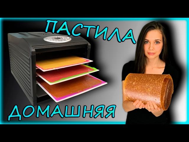 Веган RAW вкусняшка ДОМАШНЯЯ ПАСТИЛА в дегидраторе духовке