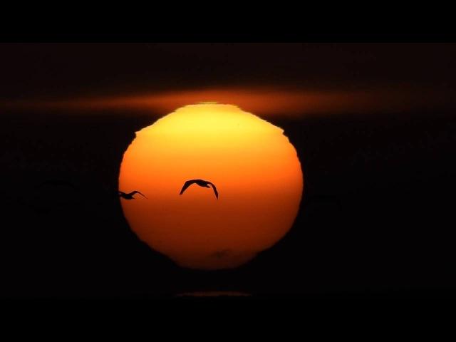 Sun 3000 miles high debunked - Nikon coolpix P900