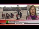 Люди едят листья с деревьев — доклад о массовом голоде в Йемене