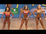 чемпионат Украины 2017 бикини