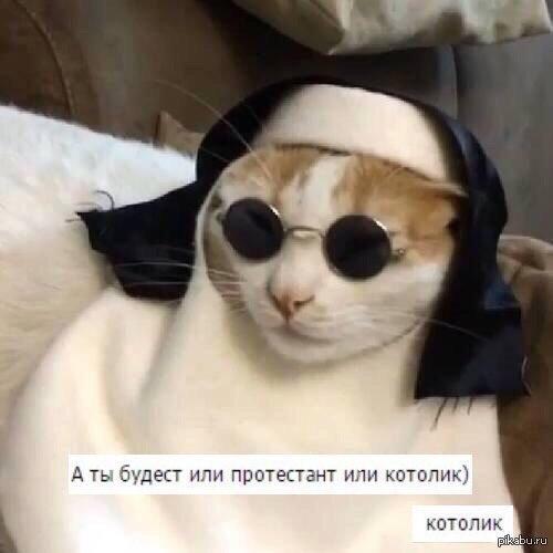 Илья Сенчихин - фото №5