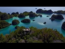 XROAD. Новая Гвинея.