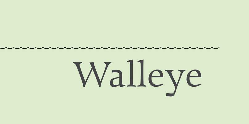 Download Walleye font (typeface)