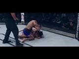 MMA HIGHLIGHT  BEST OF 2016 [HD]
