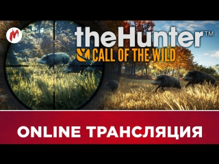 theHunter: Call of the Wild | Охота